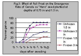 Effect of fall frost on emergence rate of canola
