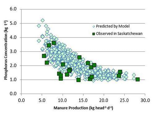 Phosphorus concentration vs manure production