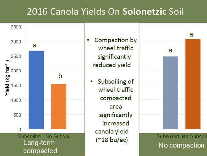 2016 Canola Yields on Solonetzic soil