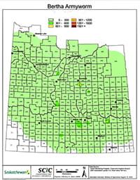 Bertha Army Worm map