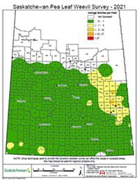 Pea leaf weevil survey map