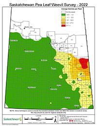 Pea leaf weevil survey map