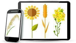 Crop Production News logo