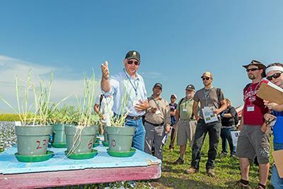 Agronomy tour