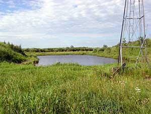 A water source, surrounded by healthy riparian area