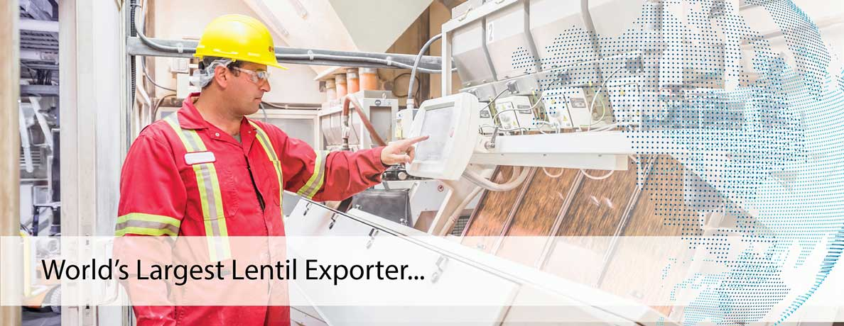World's Largest Lentil Exporter