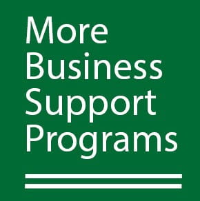 More business support programs