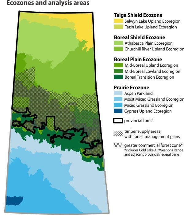 Ecozones and analysis areas