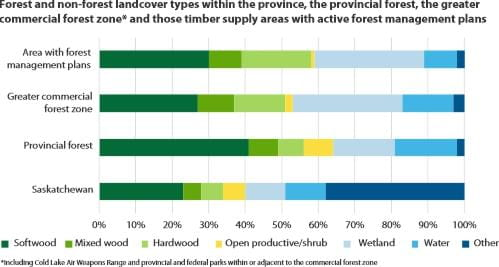 Forest and non-forest landcover