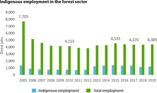 Indigenous employment in the forest sector