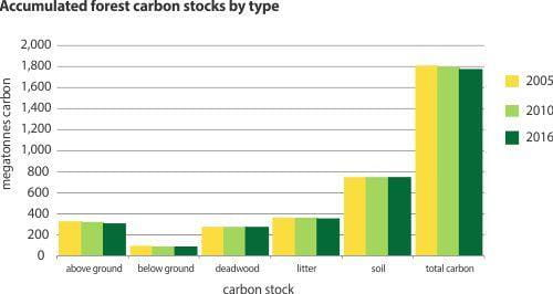 Accumulated forest carbon stocks by type