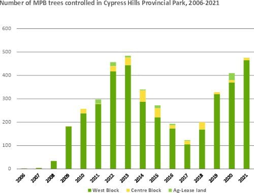 Number of mountain pine beetle infected trees