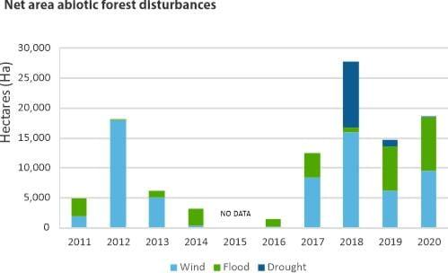 Area of abiotic forest disturbances