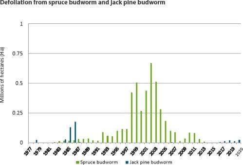 Defoliation from spruce budworm and jack pine budworm