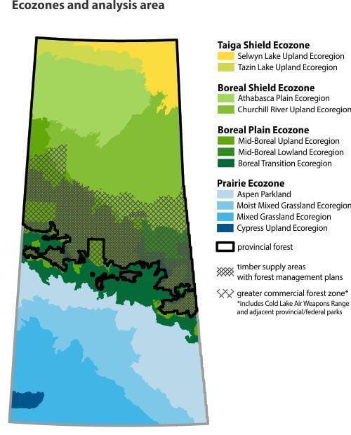 Ecozones and analysis area