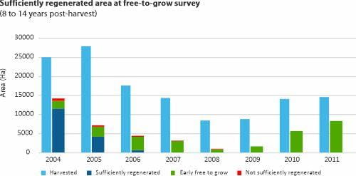 Sufficiently regenerated area at free-to-grow survey
