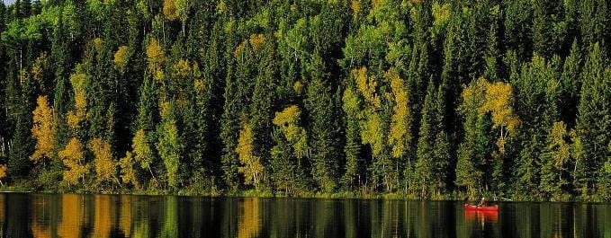 Northern forest red canoe