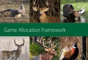 Game Allocation Framework