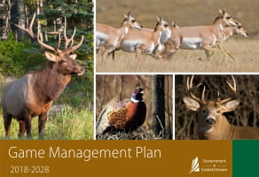 Game Management Plan