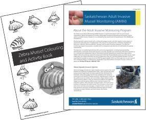 Link to AIS publications