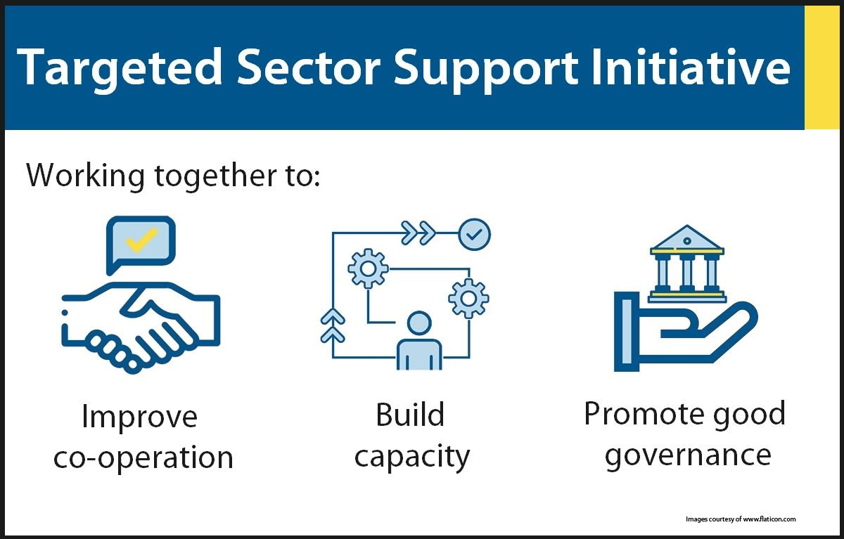 Graphic image describing Targeted Sector Support Initiative