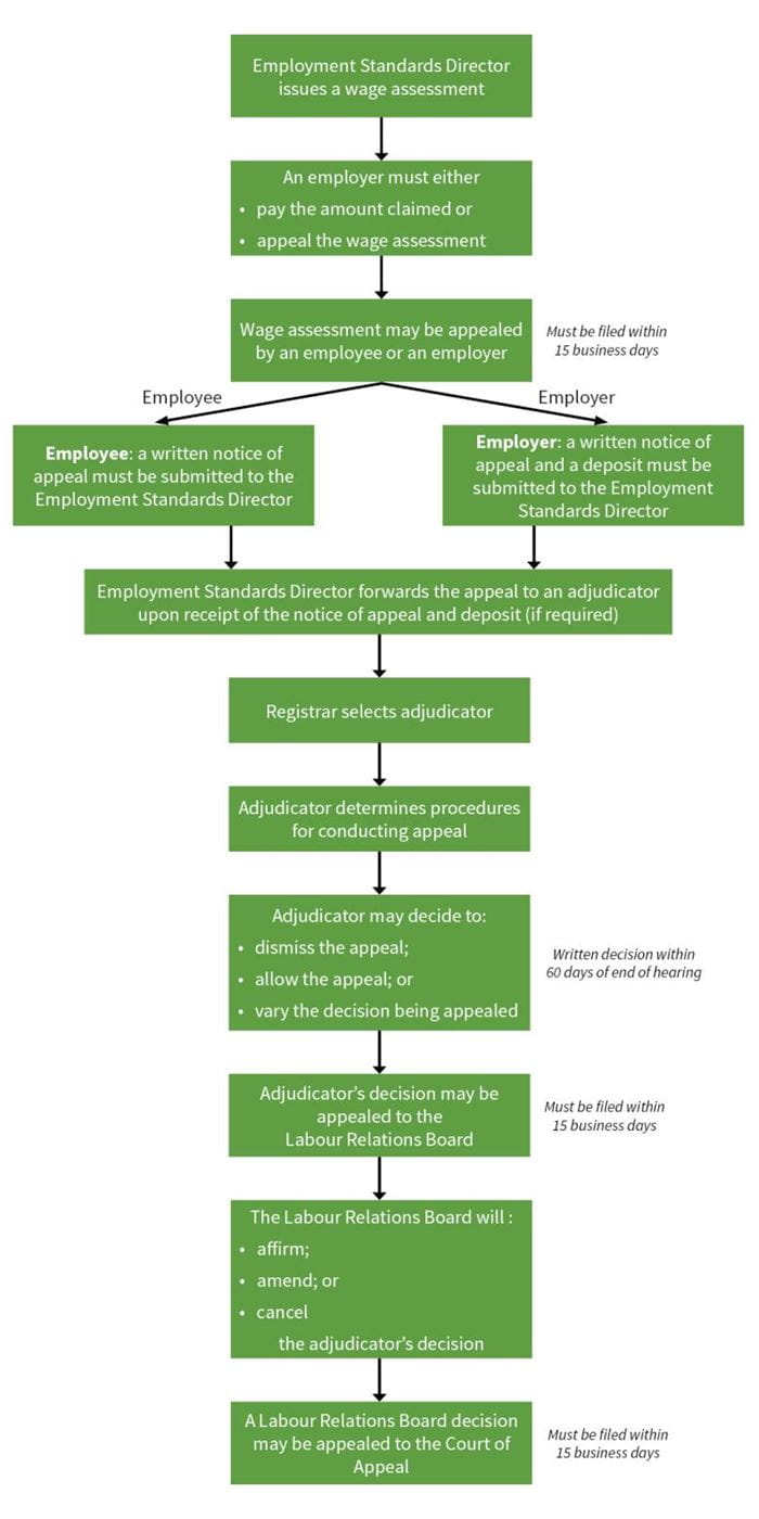 employment standards appeal process