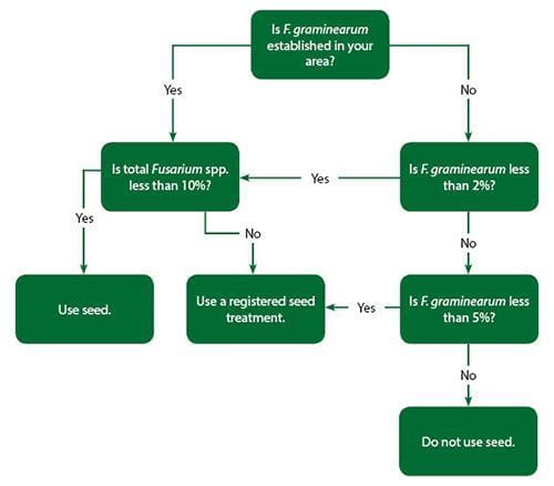 guide to crop protection saskatchewan chokecherry