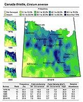 Map of Canada thistle field density