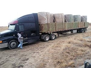 Trailer loaded with bales