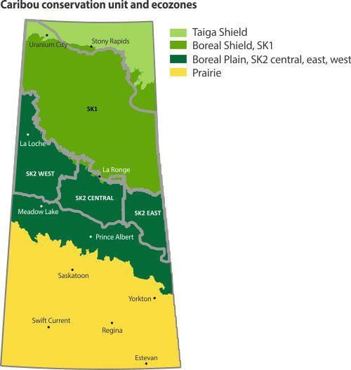 Caribou conservation unit and ecozones