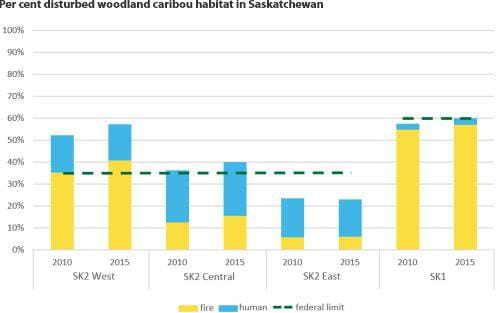 Percentage of disturbed woodland caribou habitat