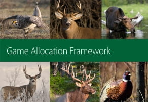 Game Allocation Framework