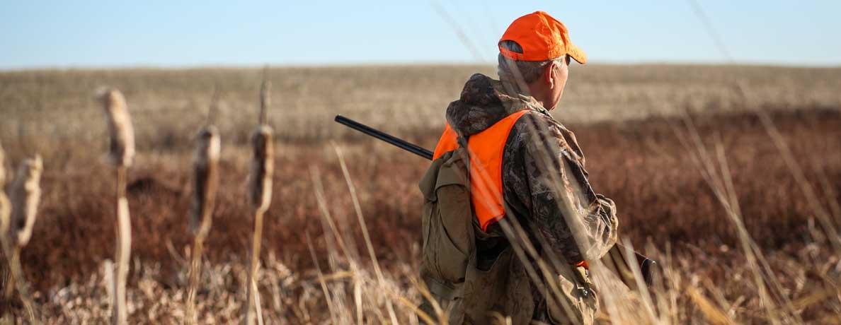 Hunter in a field