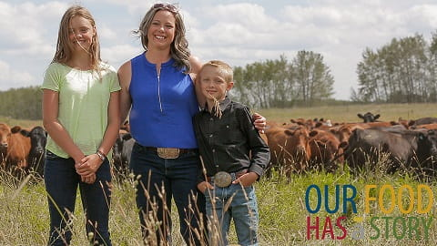Our Food Has a Story: Celebrating Agriculture Month in Saskatchewan Agriculture  Crops Cattle